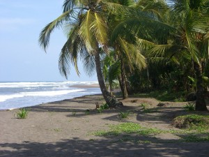 1280px-The_beach_at_Tortuguero,_Costa_Rica